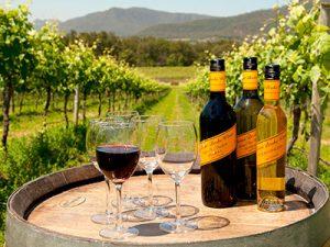 Hunter Valley Wine Tasting, Broke Fordwich