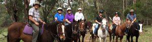 Chapman Valley Horse Riding, Hunter Valley