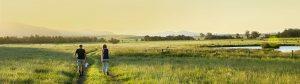 Huner Valley Countryside, Broke Fordwich