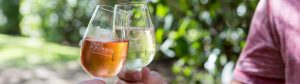 Broke Fordwich wine tasting, Hunter Valley