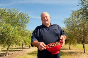 Whispering Brook Olive sensory tour & tasting experience, Hunter Valley