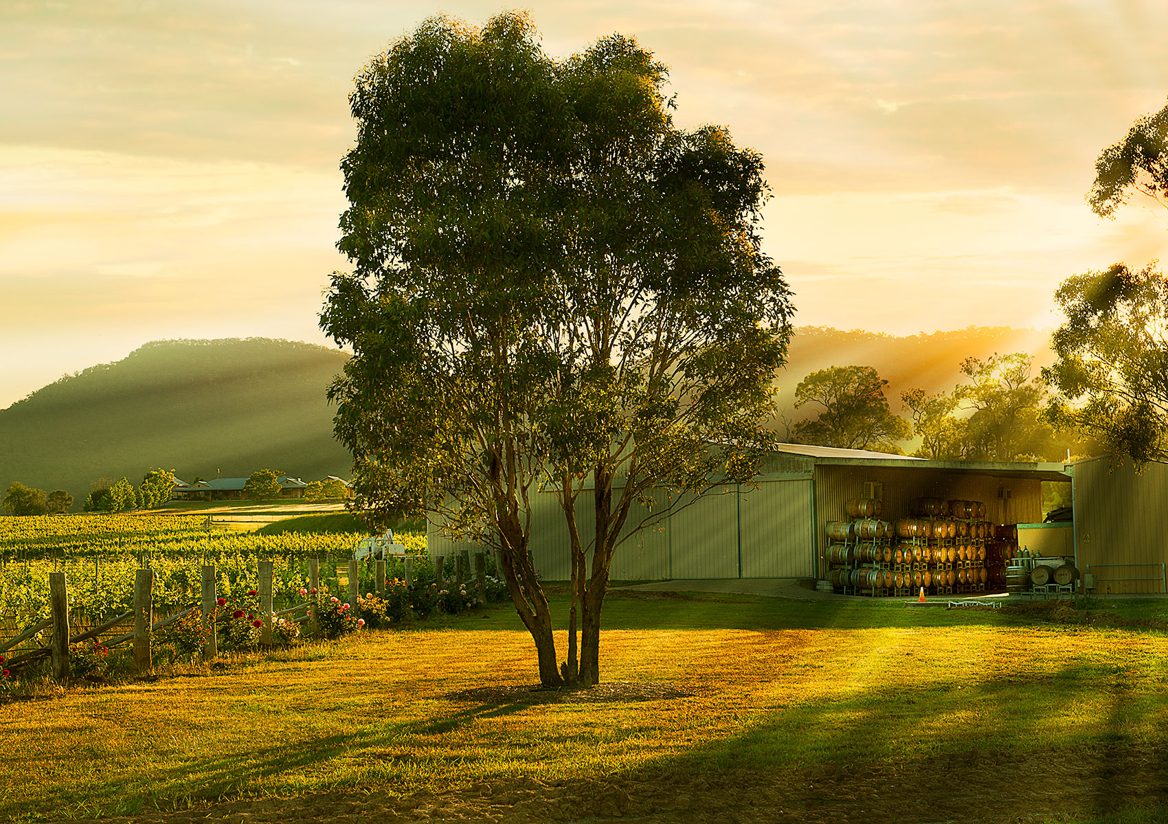 Broke Fordwich, Hunter Valley wineries